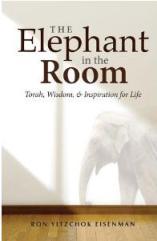 Elephantintheroom